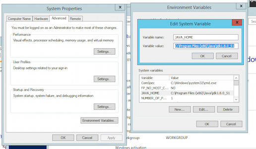 Windows environment variables