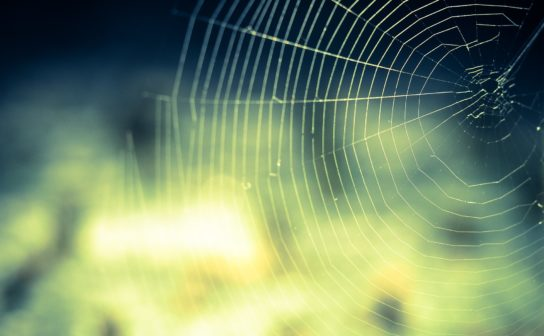 Common Crawl: An Open Web Spider