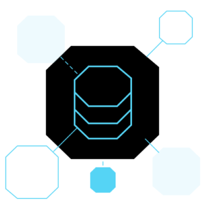 Black Octagon with a database icon on it connected to other octagons in smaller sizes