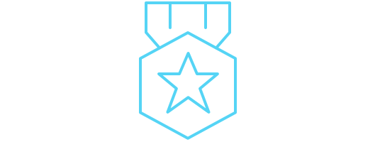 Icon of a medal with a star in it.