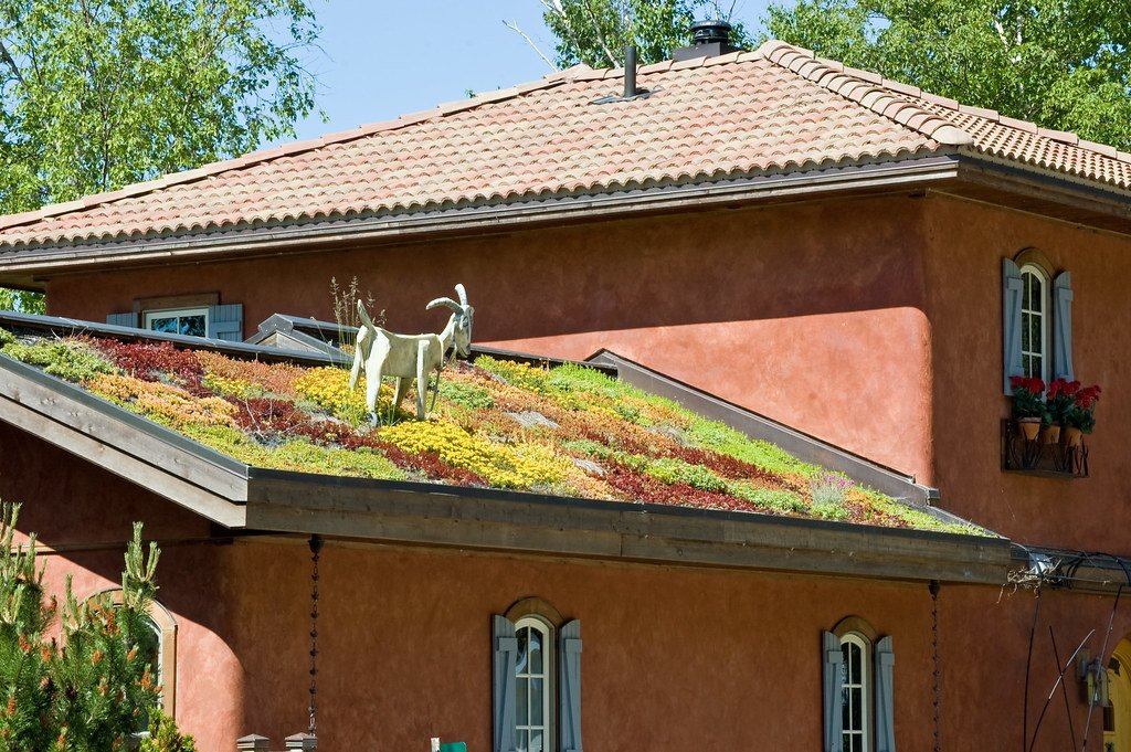A statue of a goat grazing on moss growing on a rooftop